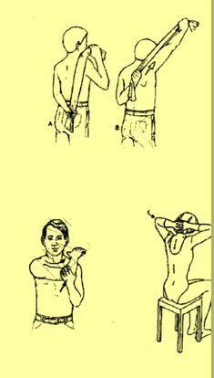 SAIKU ALTERNATIVO: Ejercicios de elongación para lumbalgias y dolores...