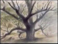 Muž, který sázel stromy - Marek Eben