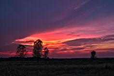 Purple Sunset by Matt Molloy on 500px