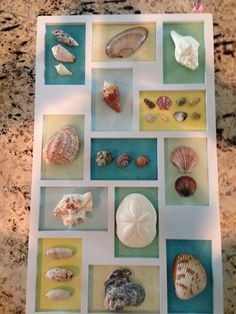 3-D shell wall hanging made with a frame from Michael's and some scrapbook paper.