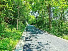 "19 aprecieri, 0 comentarii - Vlad (@vladbratualexandru) pe Instagram: ""#nature #naturephotography #forest #summer #shotonhuawei #huaweip30pro #perfectday #natureporn…"" Perfect Day, Sidewalk, Instagram, Side Walkway, Walkway, Walkways, Pavement"