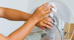 Find out how to clean a Lasko fan! Whether you have a box fan, a windows Lasko fan, or an oscillating one - we covered them all! Window Fans, Wind Machine, Papier Absorbant, Pedestal Fan, Tower Fan, Brush Type, Electric Fan, Fan Blades, Flat Head