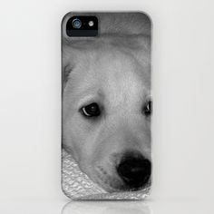 Puppy Love iPhone Case by Fiona & Paul Photography and Digital Art - $35.00