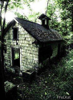 Tiny abandoned house.  It looks like the house my father n' law birth place in N. Florida.