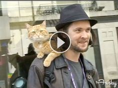 This man walks around with his kitty, everywhere. Respect.