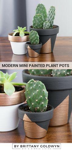 Make Modern Mini Painted Plant Pots // An easy DIY project to make cheap little painted pots complement your decor. Painted Plant Pots, Terracotta Pots, Easy Diy Projects, Diy Painting, Home Decor Inspiration, Modern Decor, Flower Pots, Flowers, Succulents