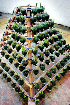 Vertical garden I LOVE THIS!!!!!!!