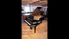 Moonlight In Vermont by Karl Suessdorf on a Steinway model B grand piano at Besbrode Pianos
