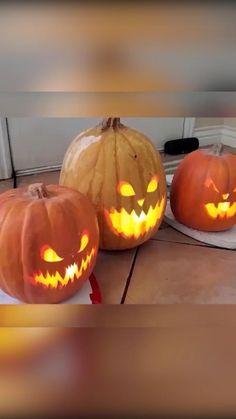 Looks Halloween, Fete Halloween, Halloween Appetizers, Outdoor Halloween, Halloween 2020, Holidays Halloween, Halloween Pumpkins, Halloween Crafts, Happy Halloween