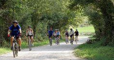 Coastal Croatia by Bicycle: Sea, Sun, Truffles - NY Times Article