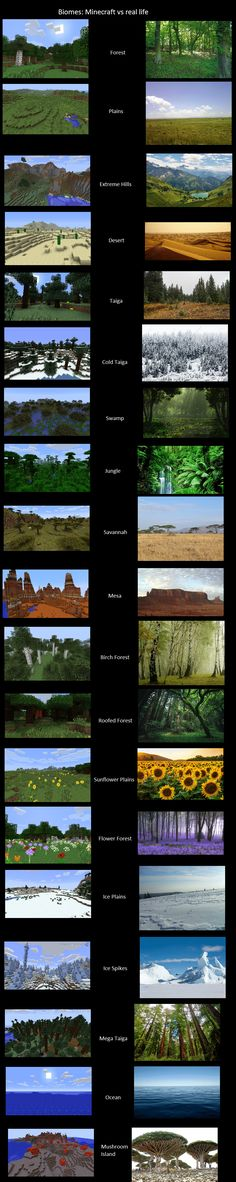Minecraft Biomes vs Real Life