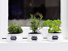 Here we've sprayed our pots white, planted with herbs. We've also added chalkboard stickers to label our herbs.