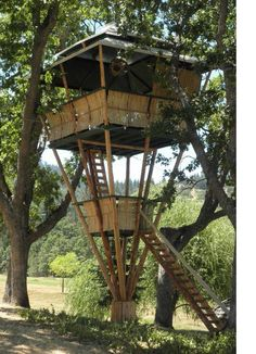 tree house...low footprint
