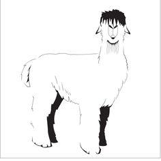 Alpaca design
