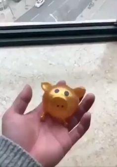 Jello Pig Looking for some stress relief toys? We might have the exact toy for you! This cute Jello Pig is a silicone toy that we . Balle Anti Stress, Things That Bounce, Cool Things To Buy, Oddly Satisfying Videos, Stress Relief Toys, Cool Inventions, Jello, Cool Gadgets, How To Relieve Stress