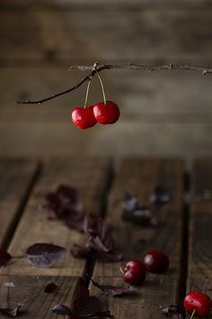 Find images and videos about red and cherry on We Heart It - the app to get lost in what you love. Fruit Photography, Food Photography Styling, Food Styling, Photo Food, Sweet Cherries, Fruits And Vegetables, Fresh Fruit, Food Art, Berries