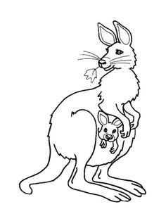 kangaroo coloring page. Who doesn't know kangaroos? Besides Koalas, Kangaroos are also Australian mammals. What is special about it? Kangaroos have privileges in their abilit. are mammals kangaroo coloring page Baby Coloring Pages, School Coloring Pages, Disney Coloring Pages, Animal Coloring Pages, Coloring Pages To Print, Coloring Pages For Kids, Coloring Books, Free Coloring, Kids Coloring