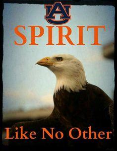 Spirit, Nova and Tiger, War Eagles! Sports stories that inform and entertain, check out RollTideWarEagle.com. #Auburn