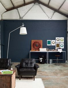 Dulux Home Factory paint collection - the walls are Raven Plume.