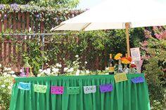Fiesta Themed Bar