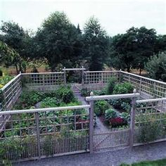 deer proof vegetable garden - well, not real sure it is because the deer can easily jump over this...but does look good