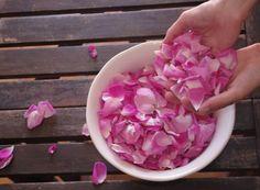 Utilisation de l'eau de rose pour la beauté de la peau