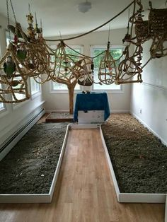 Want a bird room in your house? Making one is easier than you think.