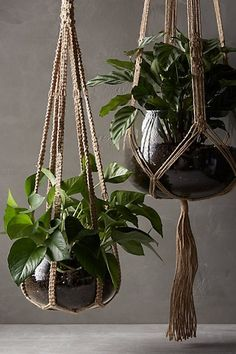 Woven Jute Planter, Anthropologie