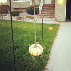 Simple fall decor: small pumpkins + twine + shepherd hooks