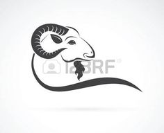 Illustration of Vector image of an goat head design on white background vector art, clipart and stock vectors. Animal Graphic, Animal Logo, Celtic Knot Tattoo, Celtic Knots, Animal Line Drawings, Ram Tattoo, Capricorn Tattoo, Music Logo, Vector Art