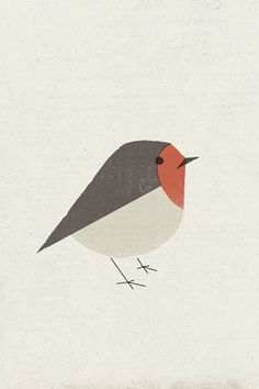 Poolga - Pit Roig - Pau Lamuà. This one has been on my iPhone for months! Bird illustration iPhone and iPad wallpaper.