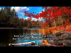Yaakov Shwekey Tehilim 42. 2-3 - YouTube