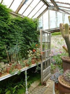 End view inside glasshouse