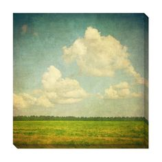 Field Clouds Oversized Gallery Wrapped Canvas | Overstock.com $149