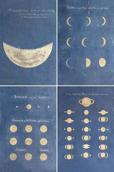 phases of the moon | Tumblr