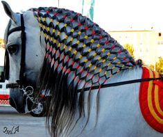 Hoping to do something like this in the of July parade next year with my pony's mane. All The Pretty Horses, Beautiful Horses, Animals Beautiful, Cute Animals, Pretty Animals, Horse Mane Braids, Horse Braiding, Horse Grooming, Mane N Tail