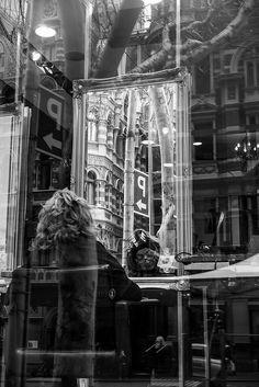 Mirror Mirror in the Window Melbourne Australia September 2014