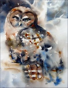 """Chenoa the Owl"" Watercolor by Maria Stezhko. Chenoa is a Northern Spotted Owl at Cascades Raptor Center in Eugene, Oregon"