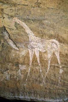 Painted rock art, close up of 2013,2034.533 showing painting of white giraffe facing left, decorated with red spots. Tintararat, Wadi Teshuinat, Acacus Mountains, Fezzan District, Libya.
