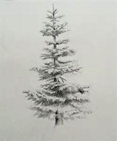 evergreen tree tattoo designs