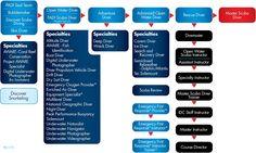 PADI Dive Courses and Diver Education Flow Chart (http://gekodivebali.com) Jeana Favors