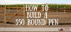 When my husband told me he could build us a round pen for only $50, I thought he was kidding. Here's how he did it.