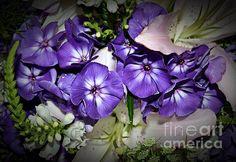 Purple Flowers Photograph- Chalet Roome-Rigdon
