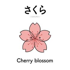 Korean Language 557742735103368902 - さくら // Sakura // Flor de Cerejeira Source by gribouillefofo Cute Japanese Words, Japanese Quotes, Japanese Phrases, Japanese Things, Study Japanese, Japanese Kanji, Japanese Culture, Japanese Language Proficiency Test, Japanese Language Learning