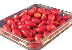 Miracle Fruit Berries - Pack of 20 Miracle Fruit Farm -help restore taste after chemothrapy Spanish Peanuts, Decrease Appetite, Sour Foods, Sour Taste, Italian Ice, Small White Flowers, Beer Tasting, Something Sweet, The Fresh