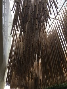 Milan, Texture, Architecture, Wood, Surface Finish, Arquitetura, Woodwind Instrument, Timber Wood, Trees
