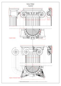 Ionic Entablature and Capital Architecture Antique, Architecture Drawings, Classical Architecture, Historical Architecture, Architecture Details, Ionic Order, Neoclassical Interior, Architect Drawing, Architectural Elements