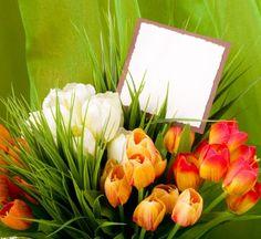Flower Shop,  Wedding Ceremonies, Thank You, Sympathy, Religious & Inspirational, Proms, Parties,Love & Romance,Holidays,Graduations,Funerals & Memorials,Corporate Events,Bridal Showers,Birthdays,Anniversaries