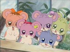 Old Anime, Manga Anime, Anime Art, Cartoon Crazy, Ojamajo Doremi, Hamtaro, Disney Cartoons, Cute Illustration, Magical Girl