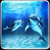 Mar Delfín Fondos Animados
